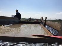 Mud Masters Obstacle, Hindernislauf Deutschland, Hindernis Wasser